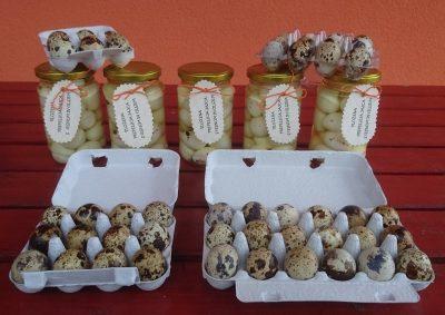 Različna pakiranja prepeličjih jajc